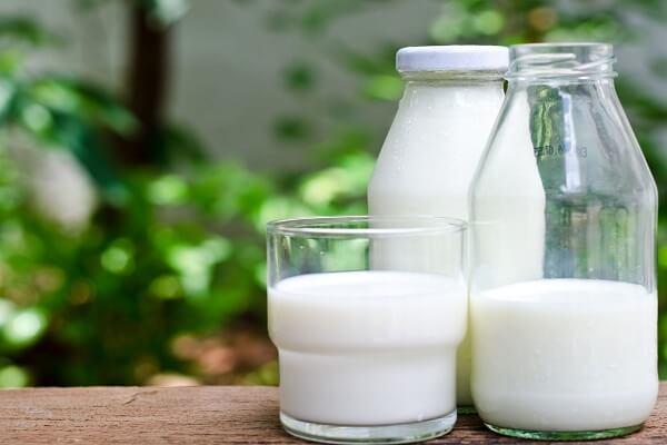 1 muỗng canh sữa tươi không đường