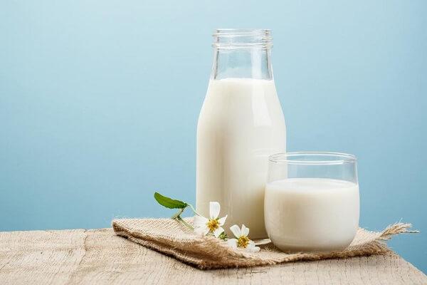 3,8 l sữa tươi