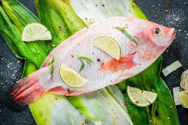 Thịt cá diêu hồng được đánh giá cao bởi chất lượng, thớ thịt liên kết chắc