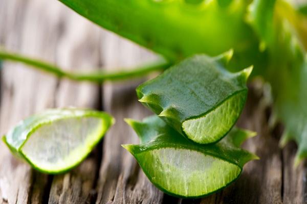 Nước trái cây nha đam có chứa mủ
