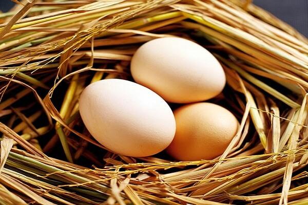 Trứng gà 3 quả
