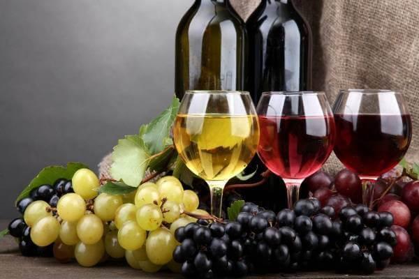 Rượu nho được lên men từ ngay những trái nho tươi