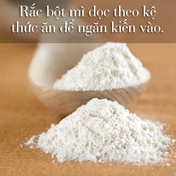 Bạn chỉ cần rắc bột mì vào khu vực kiến sống