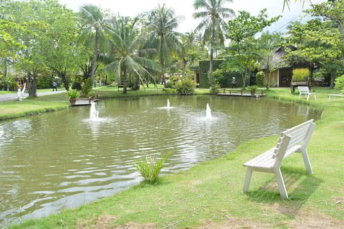 Bạn có thể đi dạo trên những thảm cỏ ven dòng kênh Sở Nhật bao đời soi bóng những hàng dừa