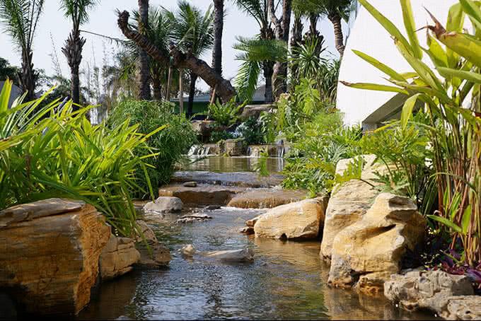 Vườn trúc Nhật xanh tươi, bên những con đường rải sỏi quanh co