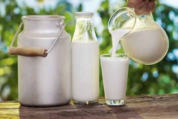 Calcium dễ dàng tìm thấy trong các loại sữa