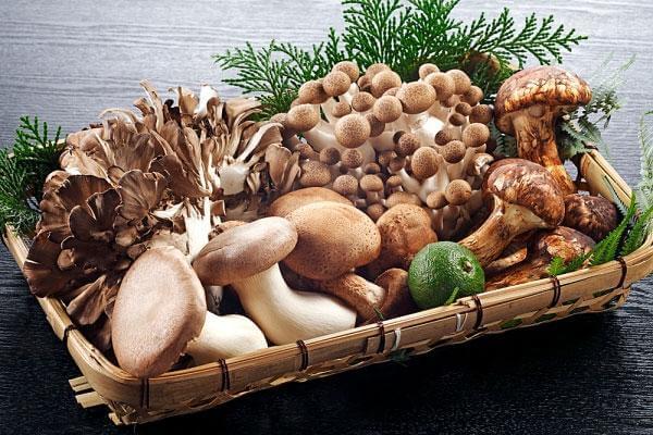 Nấm là một trong những loại thực phẩm vô cùng bỗ dưỡng