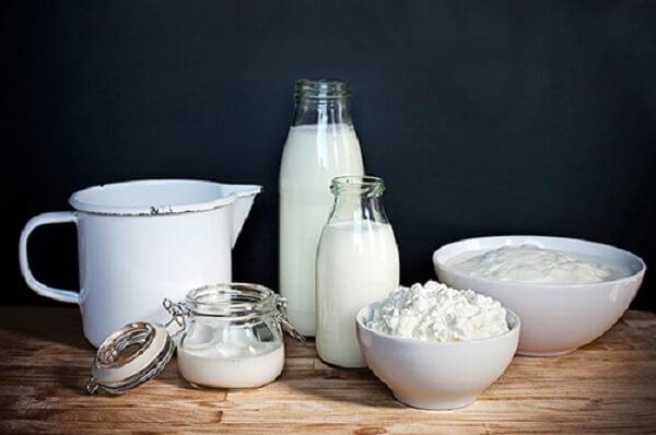Sữa là nguồn thức ăn không thể thiếu của nấm Lefir
