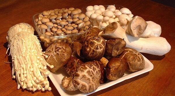 - Tên, hình ảnh các loại nấm thông dụng ăn được, nấm độc ở Việt Nam