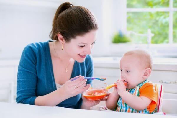 Thực Đơn Ăn Dặm Của Bé 6 Tháng Tuổi - Thực Đơn Hằng Ngày