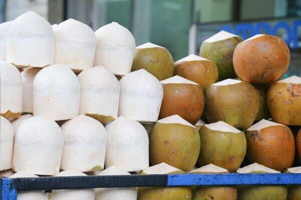 Cách chọn dừa non làm mứt - Phân biệt dừa bánh tẻ và dừa già