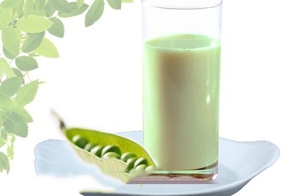 Uống sữa đậu xanh hằng ngày rất có lợi cho sức khỏe.
