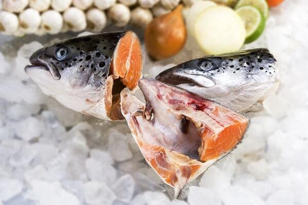 Cách chế biến cá ngừ đại dương - 8 món ngon từ cá ngừ đại dương
