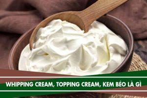 Whipping cream, topping cream, và kem béo là gì, giá bao nhiêu