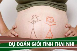 Cách dự đoán giới tinh thai nhi qua tháng thụ thai, theo tuổi bố mẹ