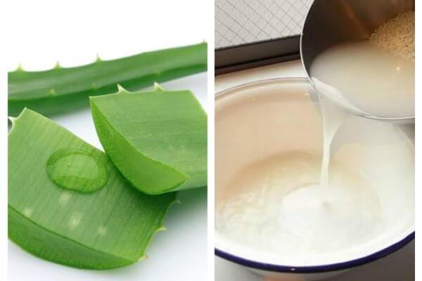 Kết hợp nha đam với nước vo gạo