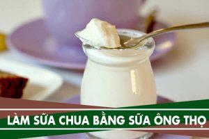 Cách làm sữa chua tại nhà bằng sữa ông thọ, sữa đặc có đường