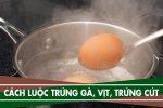 Cách luộc trứng gà lòng đào, luộc trứng cút, trứng vịt bằng nước sôi