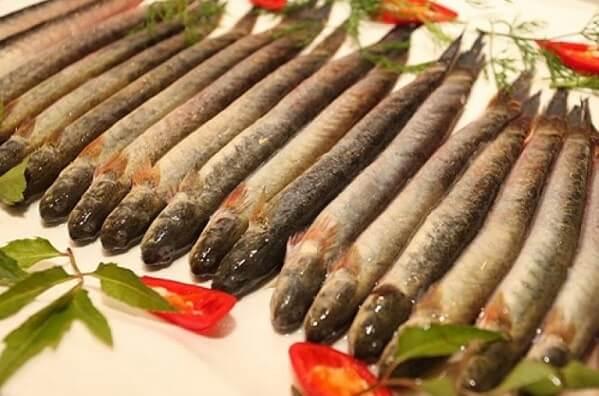Cá kèo được chọn là những con cá kèo còn sống, tươi, nguyên con