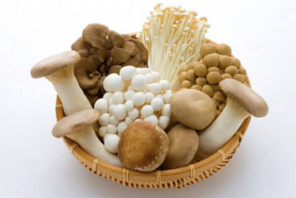 Các loại nấm