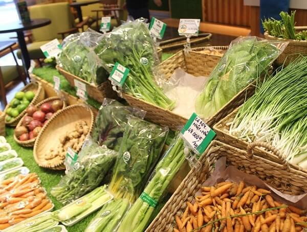 Cửa hàng rau sạch VƯỜN RAU
