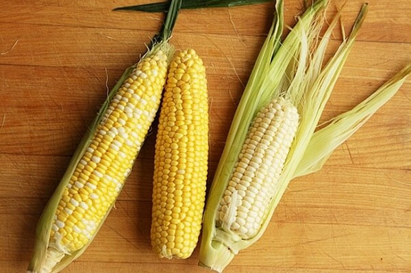 Quả bắp là một loại thực phẩm giàu dinh dưỡng và tinh bột.