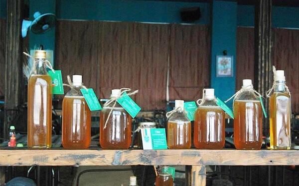 Shop sản phẩm thiên nhiên TINA