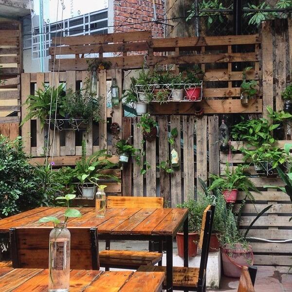 Tổ chim xanh - Cafe dành cho người độc thân yêu tĩnh lặng