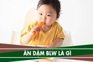 Ăn dặm Blw là gì, thực đơn ăn dặm Blw cho bé 6, 7, 8 tháng