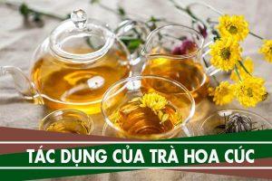 Tác dụng của trà hoa cúc trong việc tái tao da mặt, trị mụn