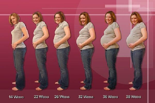 6 sự thật về giảm cân sau khi sinh cho mẹ bầu 2