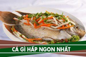 Cá hấp với gì ngon nhất - Cách làm 3 món cá hấp đơn giản tại nhà