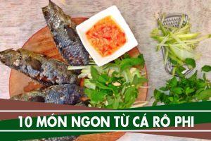 Cá rô phi nấu món gì ngon – Cách chế biến cá rô phi ngon nhất