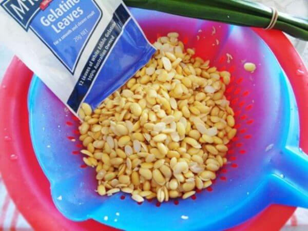 Cách làm tào phớ mềm ngon bằng đường nho tại nhà – lá gelatin