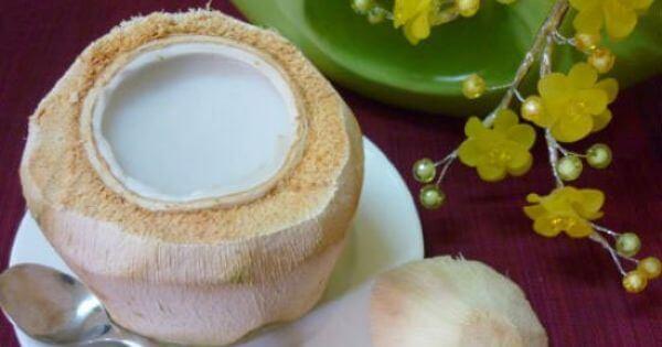 Cách làm thạch dừa, rau câu dừa nguyên trái ngon miệng tại nhà – cách làm thạch dừa xiêm