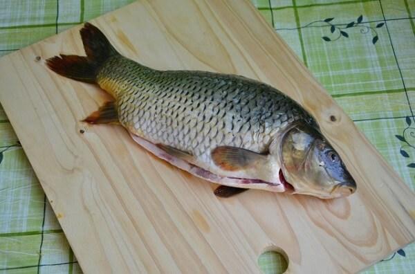 Làm sạch cá – cách nấu cháo cá chép