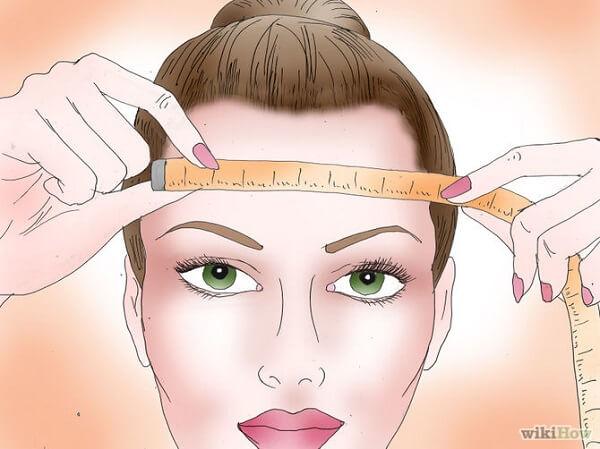 Đo chiều dài bắt đầu từ trán đến má và xương hàm.