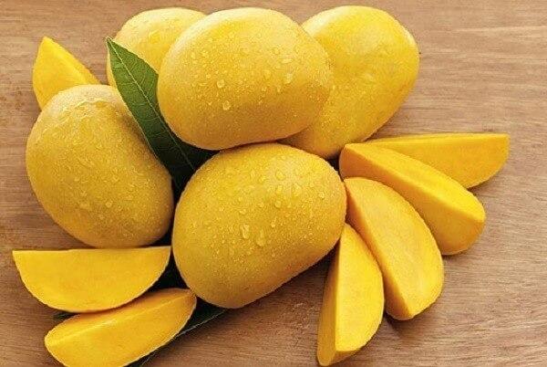 Xoài là trái cây nhiệt đới rất phổ biến ở nước ta