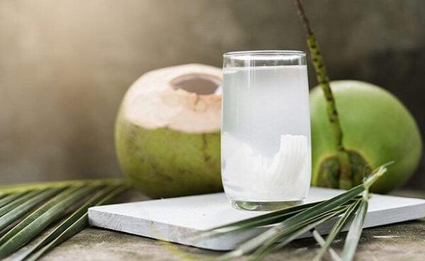 Dừa cũng là một loại quả giàu calo và chất béo như bơ.