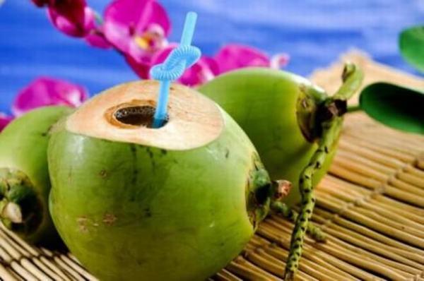 Chọn những quả dừa tươi để đảm bảo sức khỏe cho mẹ và bé