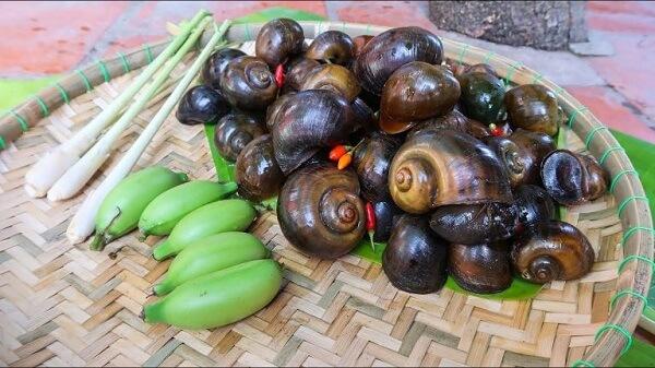 ốc bươu nấu chuối xanh 1