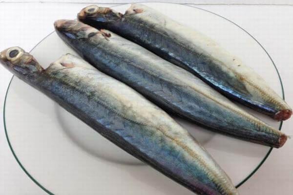 Thịt cá nục rất chắc và ngọt Ảnh Internet