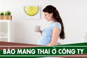 Cách thông báo việc mang thai ở công ty, công sở