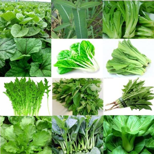 So với tất cả các thức ăn giảm mỡ bụng, rau xanh là nguồn chất xơ dồi dào để giúp bạn thanh lọc cơ thể, đốt cháy năng lượng thừa