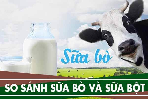 Có nên cho trẻ uống sữa bò thay vì sữa bột không?
