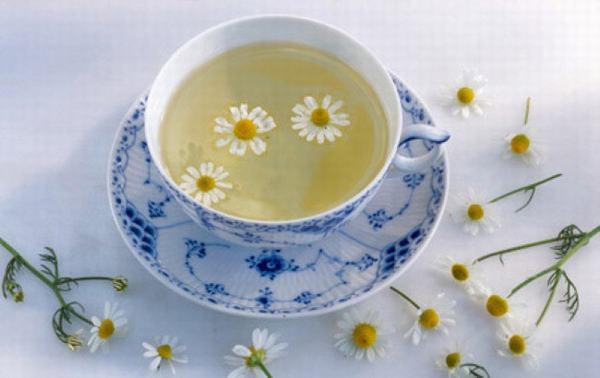 Trà hoa cúc được mệnh danh là liều thuốc ngủ tự nhiên tốt nhất.