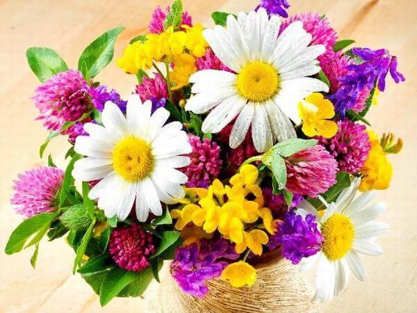 Bó hoa sinh nhật đẹp độc đáo và ý nghĩa nhất hiện nay cho bạn bè, cha mẹ
