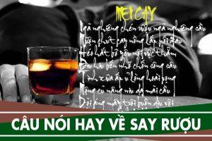 Những câu nói hay về người say rượu, Stt hay về nhậu nhẹt