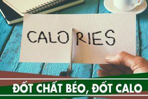 Phân biệt đốt chất béo và đốt calories trong quá trình giảm cân