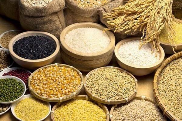 Con bạn cần được ăn đẩy đủ các loại thực phẩm có nhiều chất sắt và protein